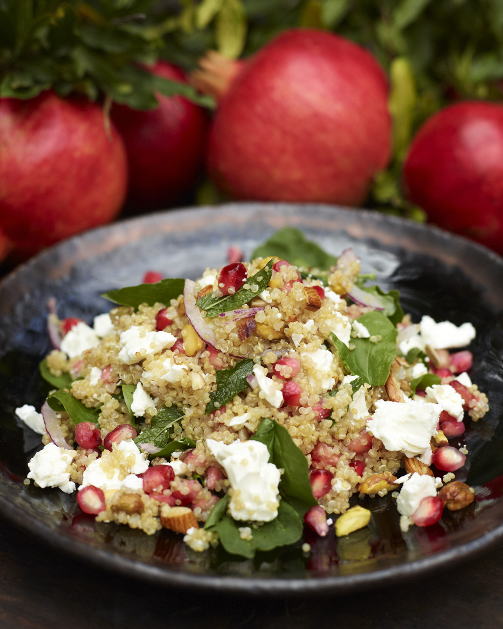 pommegranate quinoa salad-CF054552