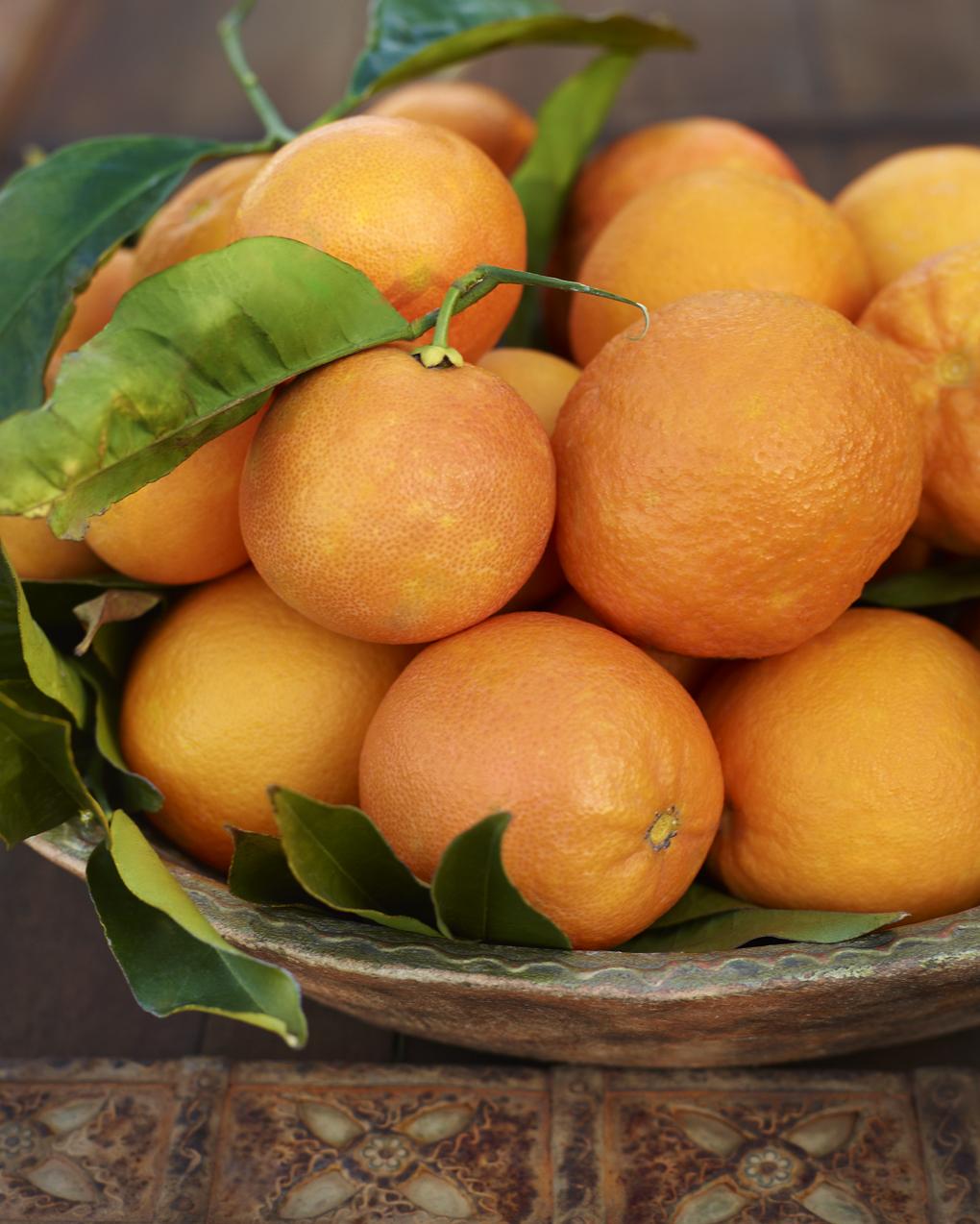 oranges-CF010135