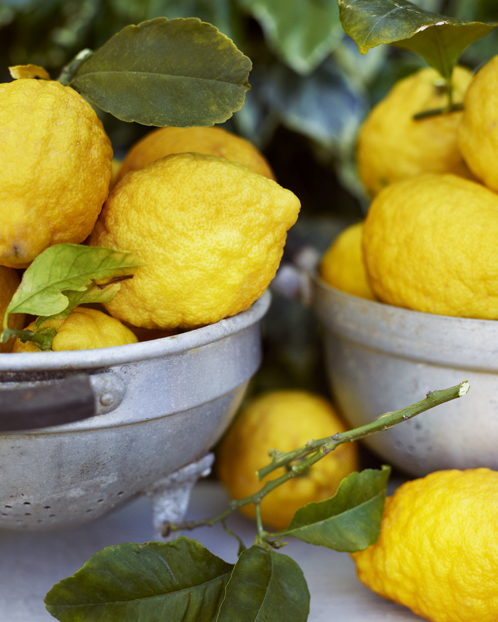 lemons-CF024520