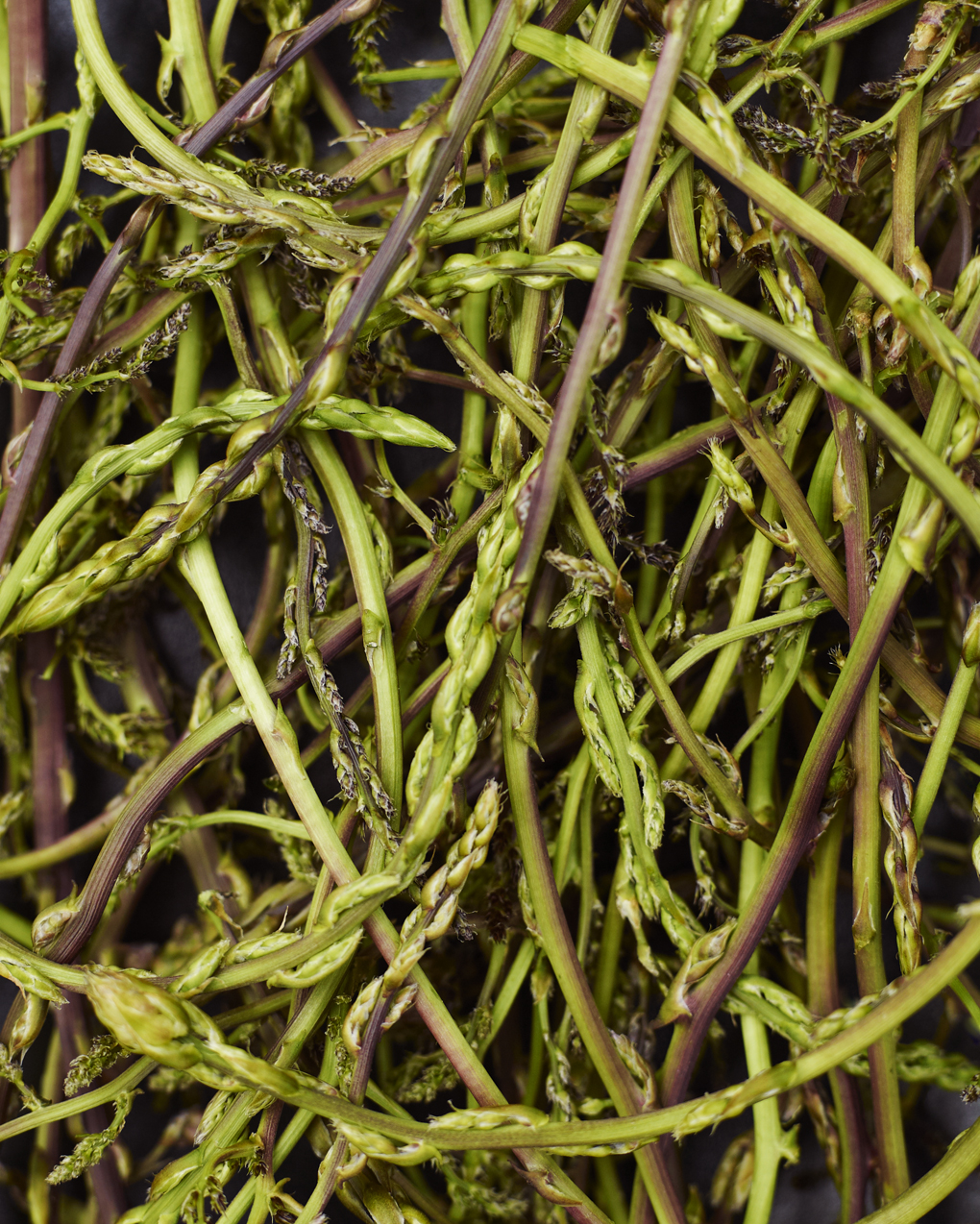 asparagus-CF021407