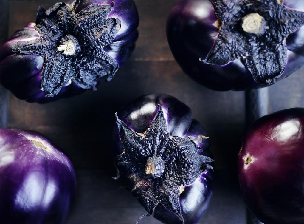 eggplant-CF084405